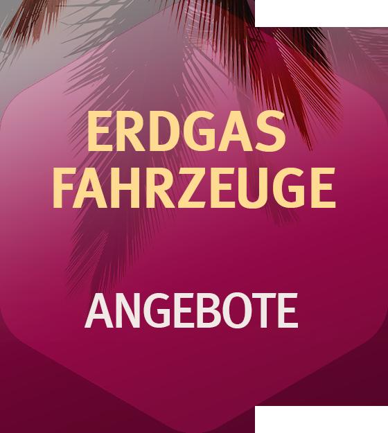Erdgas Fahrzeuge Seat Wiesbaden